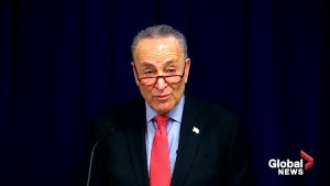 Chuck Schumer accuses Donald Trump of 'holding government hostage' with shutdown