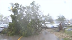 Hurricane Irma's damage in Florida, Gulf coast so far