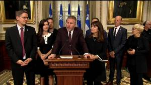 Pascal Bérubé named interim leader of Parti Québécois