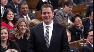 Andrew Scheer continues questioning of Bill Morneau over sold shares