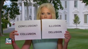 Kellyane Conway uses cue cards during interview on Fox News