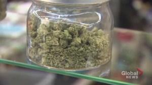 Marijuana 'snacks' brought to Oshawa school