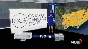 Premier Ford contradicts campaign promise on pot store locations