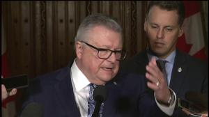 Goodale on how Canada plans to battle the spread of violent extremism