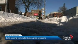 Extreme cold weather affects transportation, school bus services