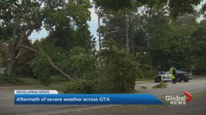 Storm brings heavy wind and rain to Halton Region