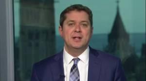 Conservatives worried federal budget lacks NAFTA contingency plan