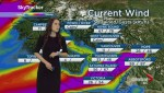 B.C. evening weather forecast: Feb 9