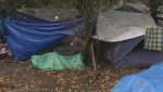 Judge grants injunction against Maple Ridge homeless camp
