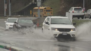 Record rain causes flooding