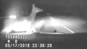 Caught on camera: Montana police officer collides with elk