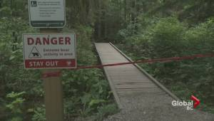 Aggressive North Vancouver bear prompts 'extreme' bear activity warning
