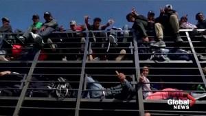Members of migrant caravan pack cage truck in Guanajuato, Mexico