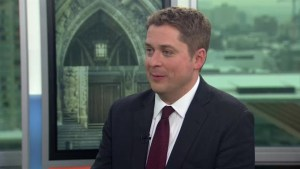 I've come to conclusion Trudeau doesn't favour free trade: Scheer