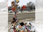 City to review crosswalk safety at site where Winnipeg boy was killed