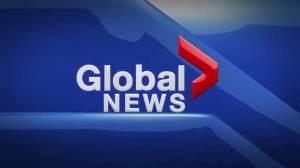 Global News at 5 Edmonton: Jun 21
