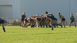 Canadian Rugby Championships underway in Saskatoon