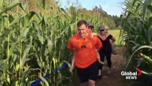N.B. couple uprooted by Fort McMurray wildfires opens corn maze in Miramichi
