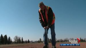 Edmonton sports fields opening