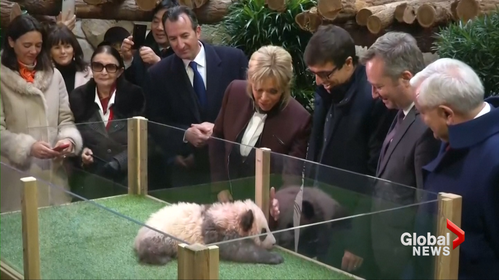 China, and special godmother, name France's 1st baby panda