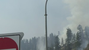 Mount Eneas wildfire grows to 500 hectares