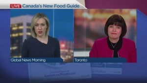 Health Minister Ginette Petitpas Taylor explains the new Canada Food Guide