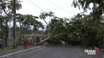 Tropical cyclone  slams Comoros, kills 3