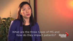 Brain interrupted: The types of MS