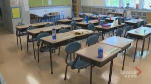 More concerns raised over changes to Ontario's sex-ed curriculum