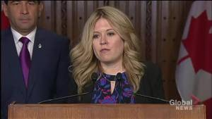 Conservative MP sends thoughts and prayers to Toronto van attack victims