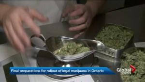 Ontario government launches awareness campaign on cannabis regulations