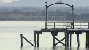 Promoter proposes to help fund repairs to White Rock pier by staging dangerous stunt