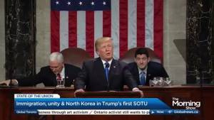 Donald Trump Stays on Script at First State of the Union Address