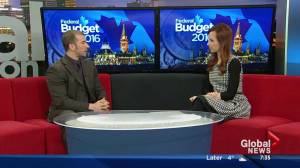 Political Scientist Robert Murray on what Federal budget means for Alberta