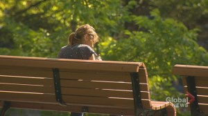Montreal pushed to prohibit smoking in public parks