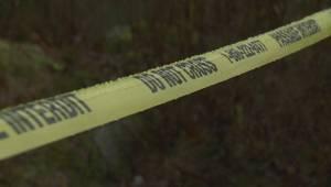 Cougar attacks 2-year-old boy near Mission B.C.