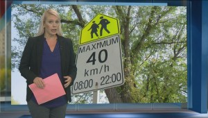 School zone safety debated at Regina's executive committee