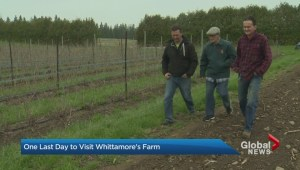 Whittamore's Farm closes its gates tomorrow after 60-years.