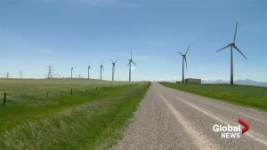 Kainai First Nation hopes to see financial benefit from wind project