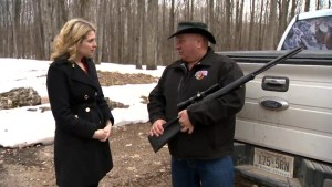 How much does gun control factor for rural Ontario voters?