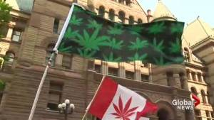 Marijuana dispensary raid protesters demonstrate outside Toronto courthouse