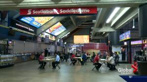 Job seekers line up for part-time work with the Calgary Flames