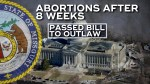 Missouri state senate passes bill outlawing abortions after 8 weeks