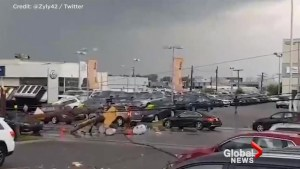 Video shows aftermath of storm near Gatineau and Ottawa