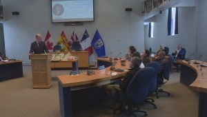 Fredericton mentorship program hopes to boost province's immigration