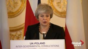 Police powers may be increased to combat drones: Theresa May