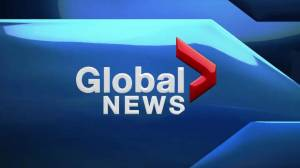 Global Edmonton News at 5: June 17