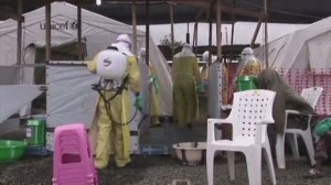 Doctors Without Borders says health care system in Liberia has 'broken down' in wake of Ebola outbreak