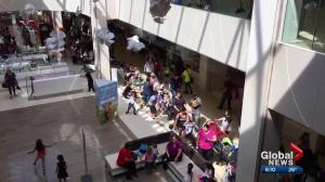 Build-A-Bear promotion causes pandemonium at malls