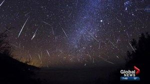 How to watch the perseid meteor shower and solar eclipse